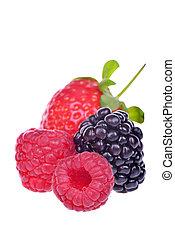 closeup, od, dobrany, świeży, jagody, odizolowany, na białym, tło
