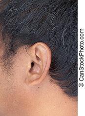 Closeup of a asian human ear