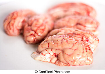 closeup of a brains on white background