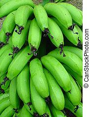 bunch of green banan