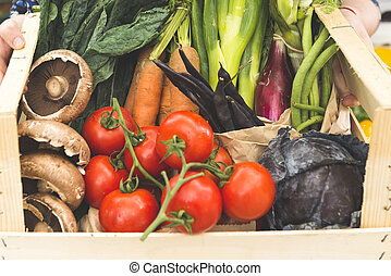 Closeup of a Crate of Assorted Fresh Vegetables