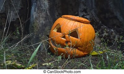 Closeup of a creepy rotten pumpkin with a lid near an old wooden stump is lit by a bright light. close-up of a jack-o-lantern prepared for Halloween. A waste of food concept.
