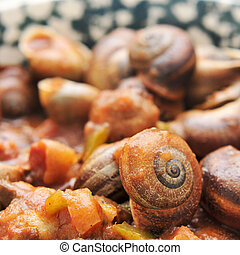 spanish cooked snails in sauce