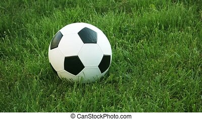 Closeup of a Football Resting in the Grass