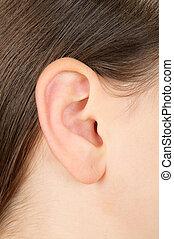 Closeup of a girl ear