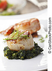 closeup of a grilled scallop on spinach