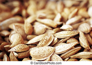 closeup of a pile of almonds in she