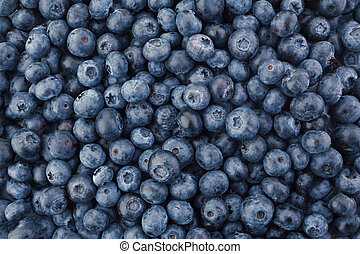 Closeup of a Pile of Fresh Blueberries in an Open Air Market