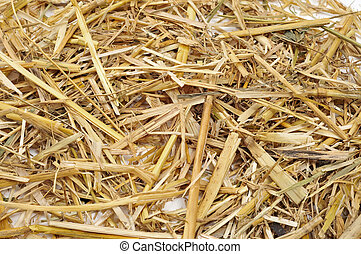 closeup of a pile of straw