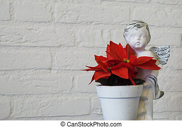 closeup of a red christmas star flower in a flowerpot with angel sculpture isolated on a white brick wall background