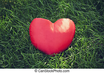 closeup of a red heart on the grass