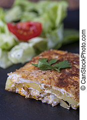 closeup of a slice of tortilla