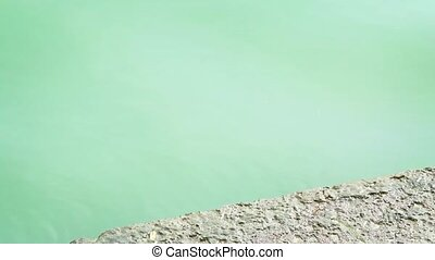 """Closeup of an Asian Water Monitor Lizard, Swimming in a..."