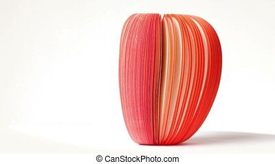 Closeup of apple of paper rotates