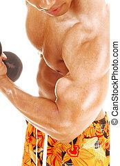 Closeup of biceps.
