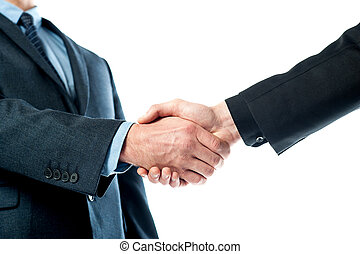 Closeup of business people shaking hands - Cropped image of...