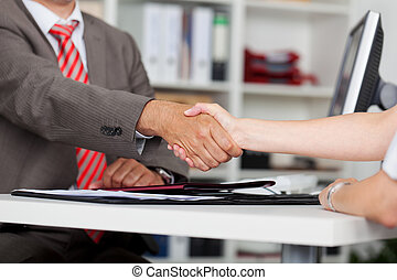 Closeup Of Businessman Shaking Hands With Female Candidate