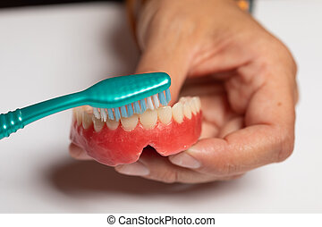Closeup of cleaning denture or dental prothesis with ...