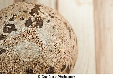 closeup of coconut