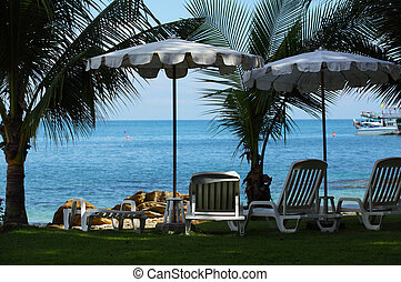 Closeup of cozy beach with sun chairs, umbrellas and palms against blue tropical sea.