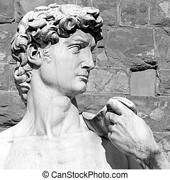 closeup of David by Michelangelo - Piazza Signoria in  Florence,