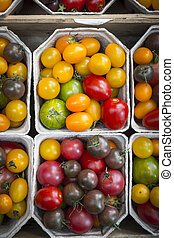 closeup of different multicolored varieties of tomatoes