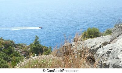 Closeup of dry grass on the rocks and alone yacht sailling...