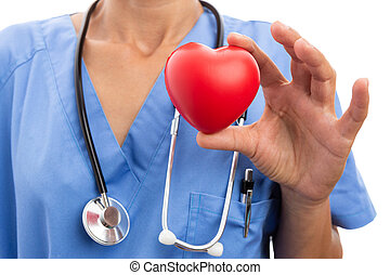 Closeup of female doctor cardiologist holding toy red heart