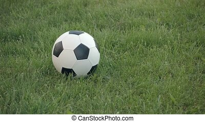 UHD video - Closeup shot of a football, with its traditional black and white geometric pattern, rolling into frame and coming to a stop on a grassy field.