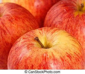 Closeup of four ripe Gala apples