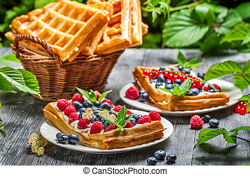Closeup of fresh berry fruit on waffles