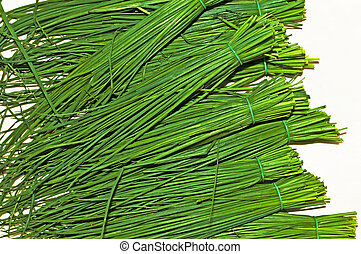 chive - closeup of fresh green chive