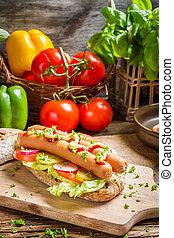 Closeup of fresh hot dog with mustard and ketchup