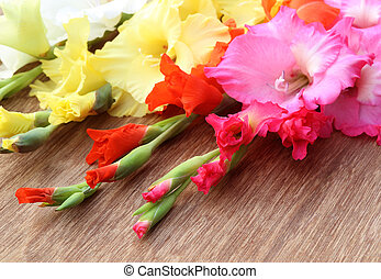 Closeup of pink orange yellow gladiolus flower with selective focus