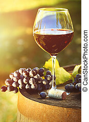 Closeup of glasse of red wine and grapes