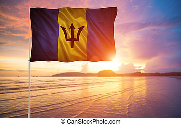 flag of Barbados.