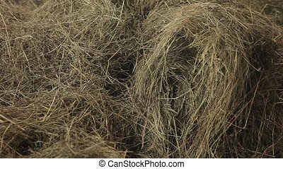Closeup of hay in a barn.