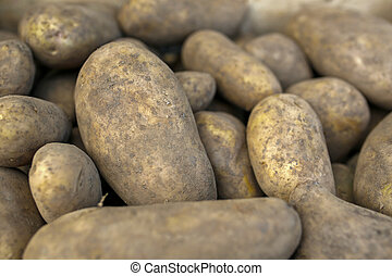 closeup of heap of potatoes