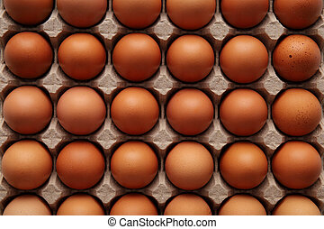 Closeup of many fresh brown eggs in carton tray Top viev - ...