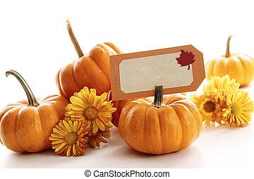 Closeup of mini pumpkins with place card