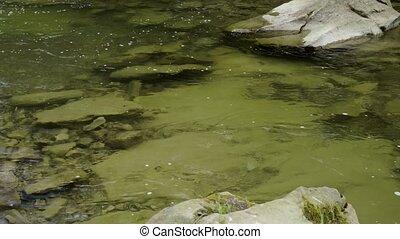 Closeup of mountain river - Closeup of a flow of mountain...