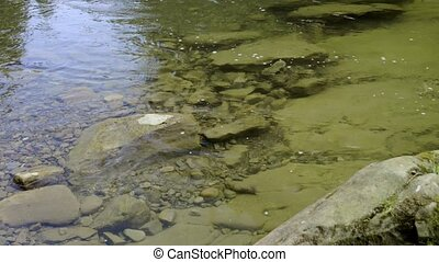 Closeup of mountain river - Closeup of a flow of mountain...
