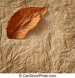 Closeup of old parchment paper with leaf