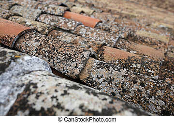 closeup of old roof tiles