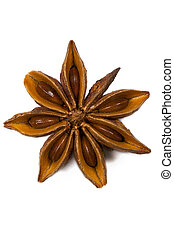 closeup of one star anise on white background