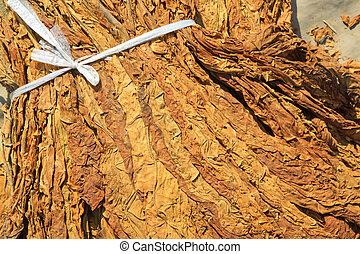 closeup of photo, dry tobacco leaves in the market