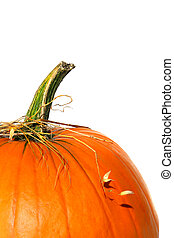 Closeup of pumpkin with bits of straw