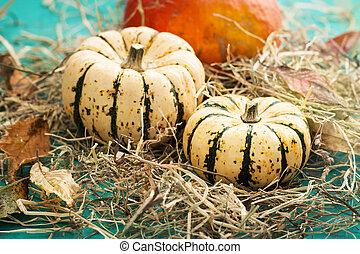 Closeup of pumpkins on a hay with autumn leaves