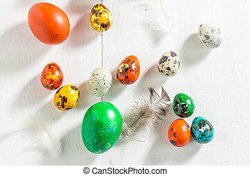 Closeup of quail and hen eggs for Easter