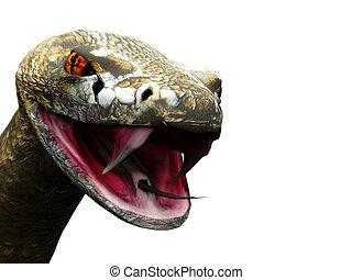 Closeup of rattlesnake ready to strike - A closeup of a...